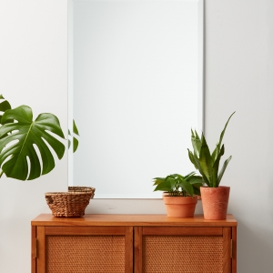 Frameless beveled rectangle mirror copper-free hanging on wall above wood credenza and plants